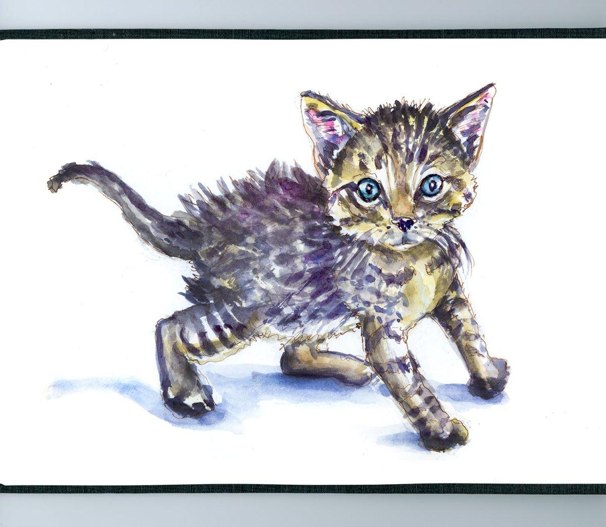 Day 23 - World Watercolor Month Furry Creatures Kitten - Doodlewash