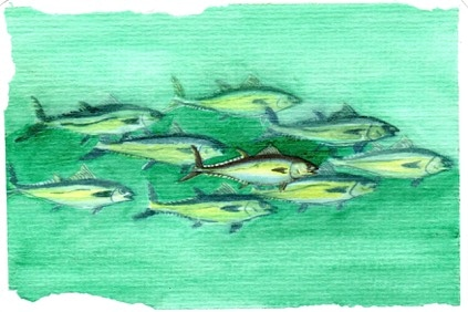 """For a """"Just Green"""" post card challenge. The center tuna was cut out of a book and was th"""