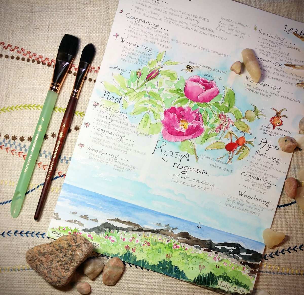 Princeton Neptune brushes for journaling and sketching