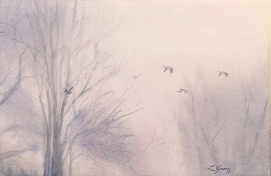 Into the mist, these birds do fly destined for trees to roost at night; to sit and rest and wait to