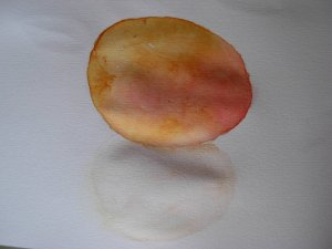 Day 14 Sweet treats. An apricot. Watercolour and watercolour pencils. Jour 14