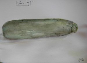 Day 15 A courgette/zucchini, painted in watercolour and with watercolour pencils during the 2nd part