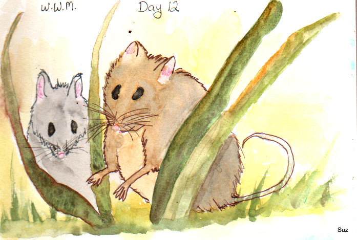 #WorldWatercolorMonth Day 12: Forest Animals Posting this early as I'm leaving on a wee trip a