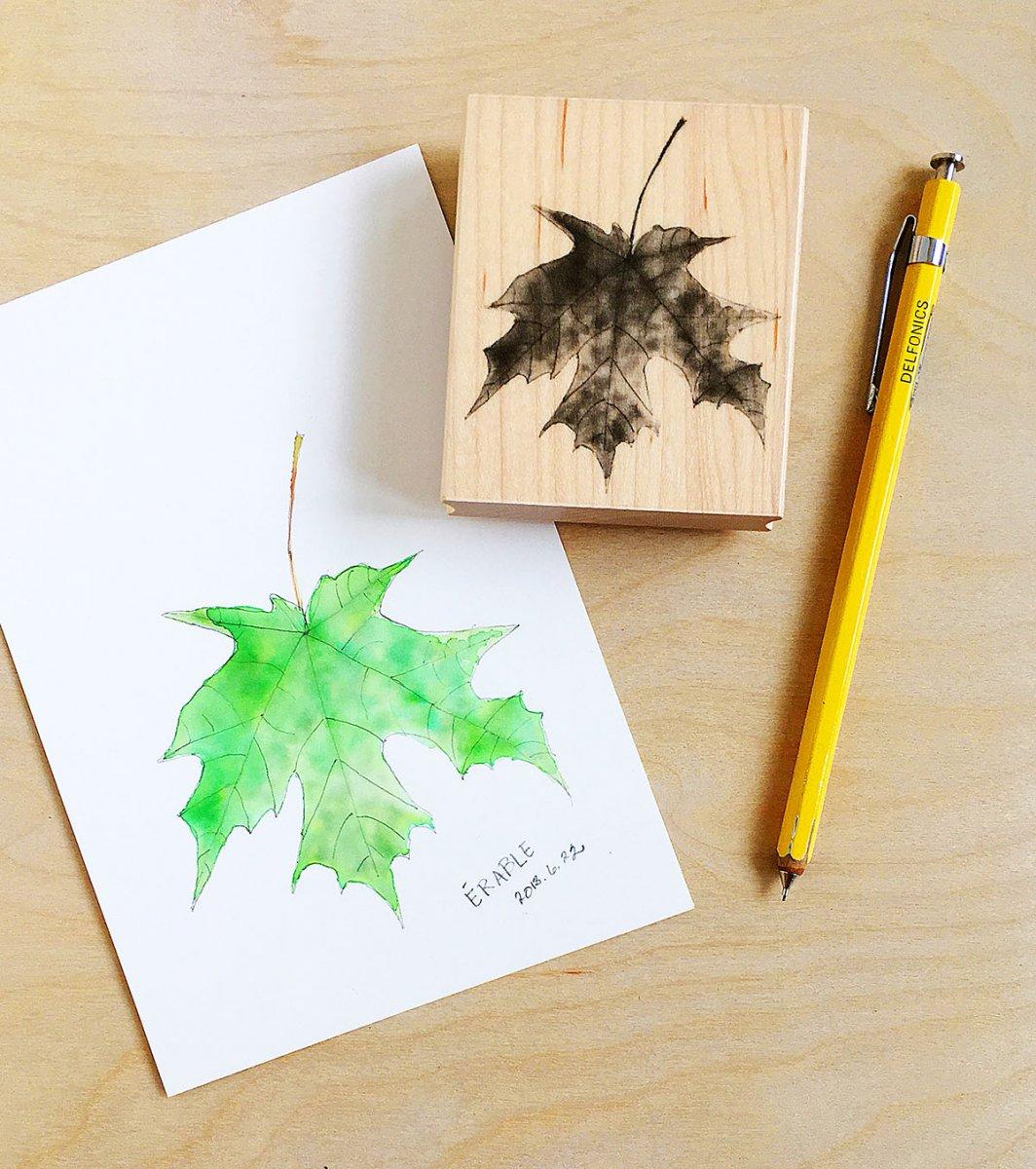 Maple Leaf Stamp and Watercolor - Lisa Spangler - Doodlewash