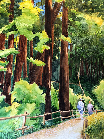 Muir Woods National Monument 2018. #worldwatercolormonth muirpaint1