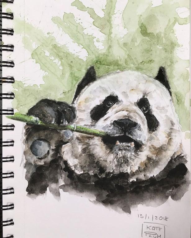 Panda Watercolor Painting by Kate Plum - Doodlewash