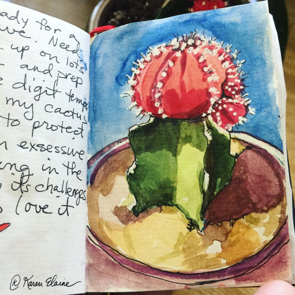 I have been journaling visually for over 25 years. I have started many journals yet only finished a