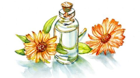 Day 18 - The Smell Of Flowers Essential Oils - Doodlewash