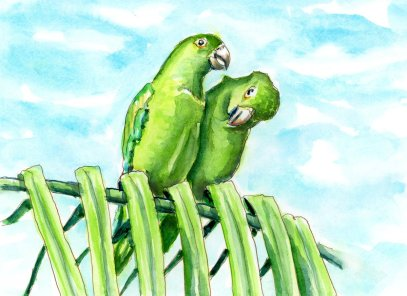 Day 3 - Finding The Best View_Parrots Palm Tree - Doodlewash