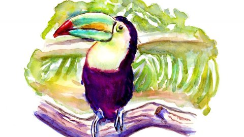 Day 8 - Breakfast Froot Loops Toucan Watercolor - Doodlewash