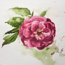 Watercolor Painting by Jim Huppenthal - Flowers