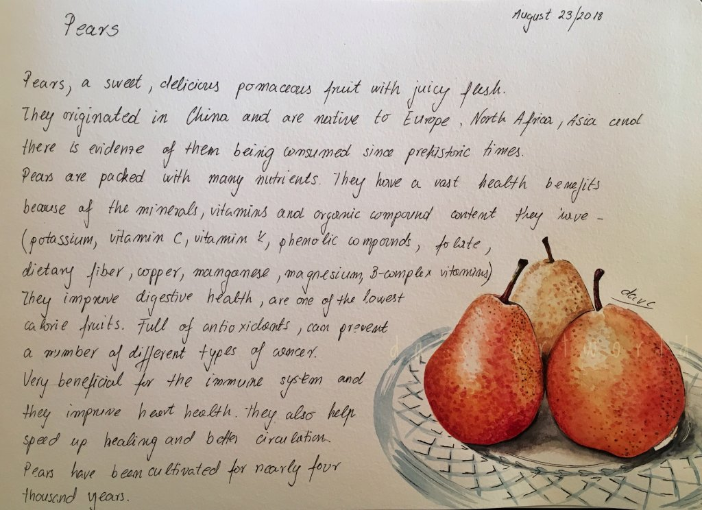 """2nd page of my little """"food I love"""" sketchbook project! Pears! From my own photo – The"""