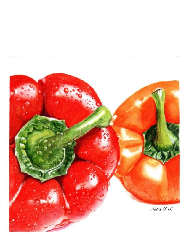 Red Pepper and Orange Pepper Watercolor Painting by Neha Subramaniam - Doodlewash