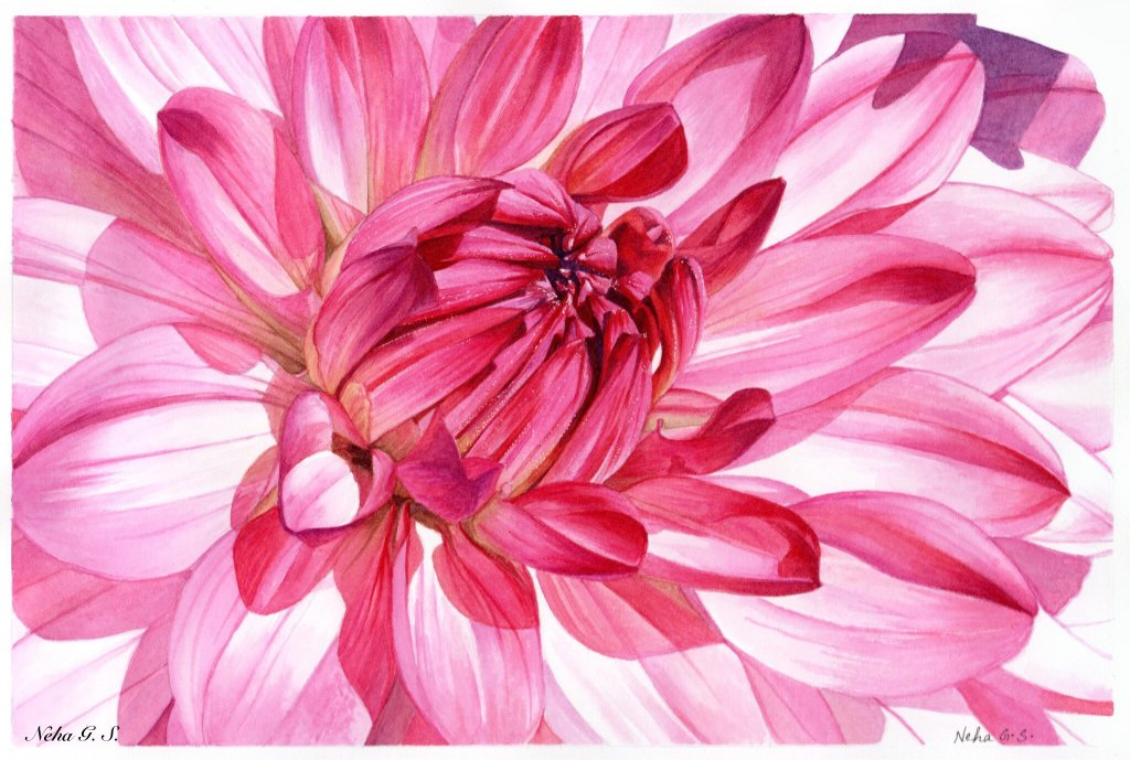Pink Flower Watercolor Painting by Neha Subramaniam - Doodlewash