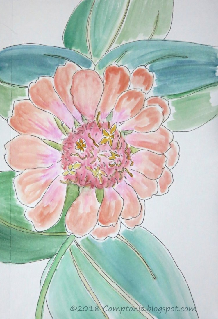 Another zinnia. Am finding them irresistible. aug14