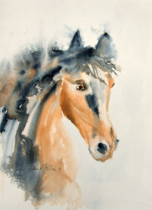 Horse Cheval Watercolor Painting by Martine Jacquel Saint Ellier - France