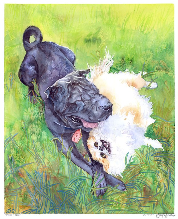 Bruce And Izzi - Watercolor by Karolina Szablewska - Doodlewash