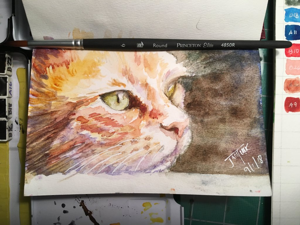My sketch for today's prompt, Ginger Cat Appreciation Day! Daniel Smith Watercolors in a Hunt