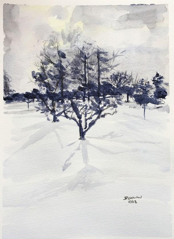 Snow Watercolor by Bernadette Tully Dolan - Doodlewash