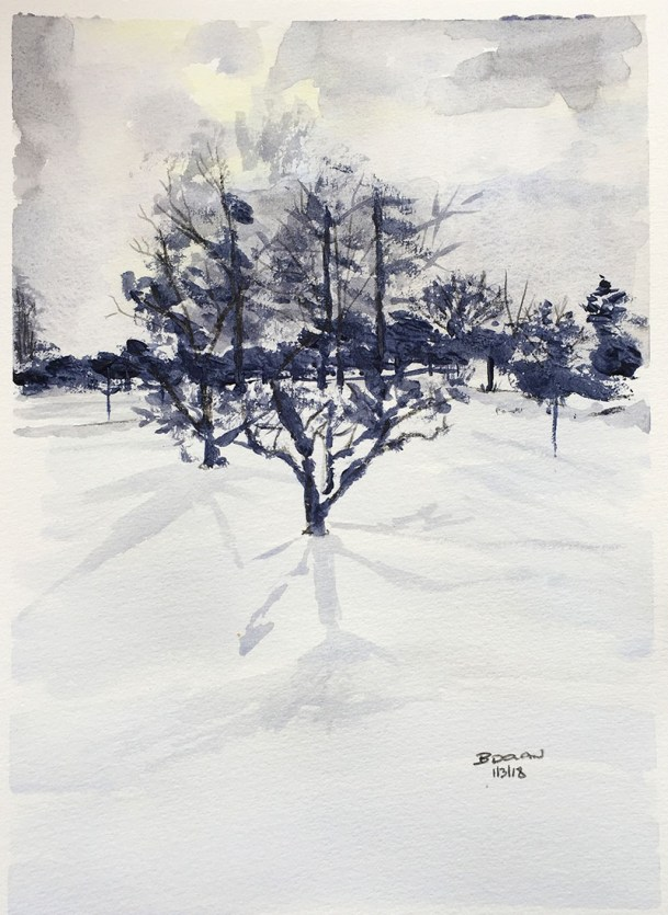 Snow Watercolor by Bernadette Tully Dolan - Doodlewash