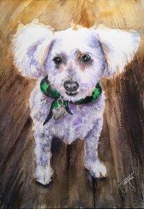 Daisy, Daniel Smith Watercolors on Arches Cold Press, 7 x 10 Daisy