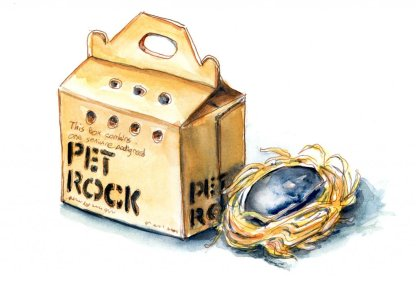Day 2 - Pet Rock And Box Original 70s - Doodlewash