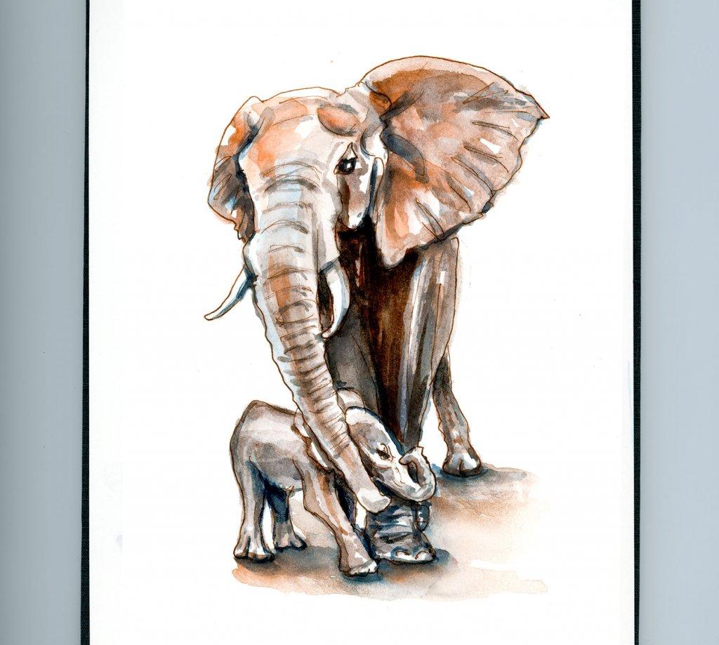 Day 22 - Elephant Appreciation Day - Doodlewash