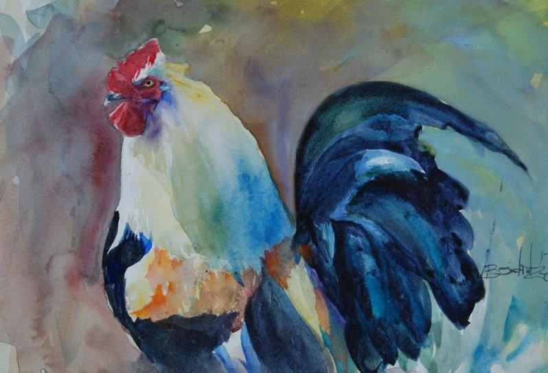 Watercolor Painting by Brad Schulze - Rooster - Doodlewash