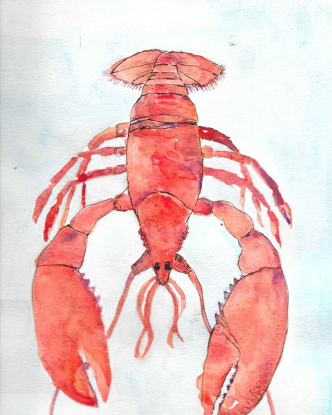 """unfinished projects…. request from my son for """"lobster art"""" for his new home with"""