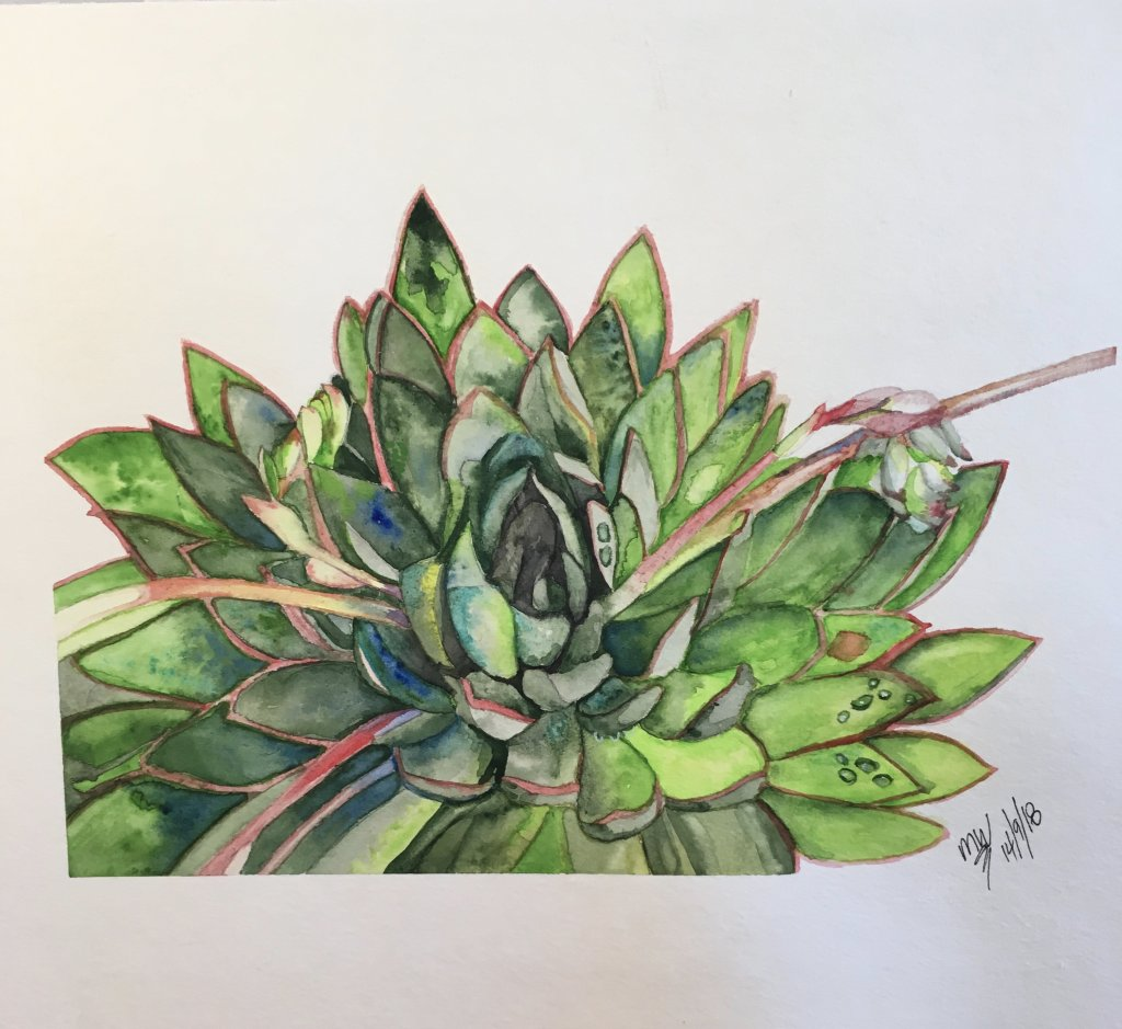 I joined Skillshare and did a tutorial with Louise de Masi, an amazing Australian watercolourist, mi