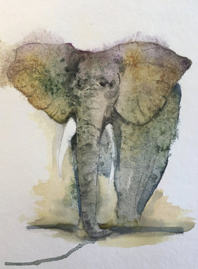 Day 22 Elephant Appreciation Day More practice with dropping colour on to the wet wash and also usin