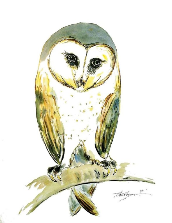 Owl Watercolor by Thomas Mühlbauer - Doodlewash