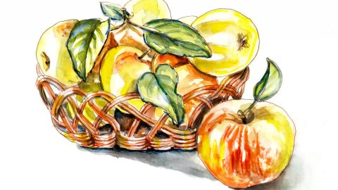 Day 1 - Picking Apples Watercolor - Doodlewash