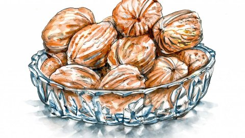 Day 10 - Walnuts Glass Bowl Watercolor Ink Inktober - Doodlewash
