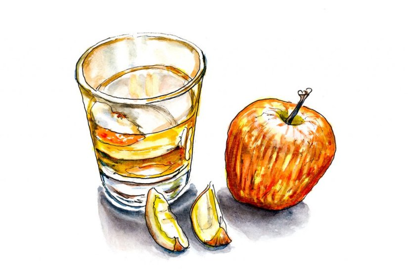 Day 14 - Cider And Apples Watercolor - Doodlewash