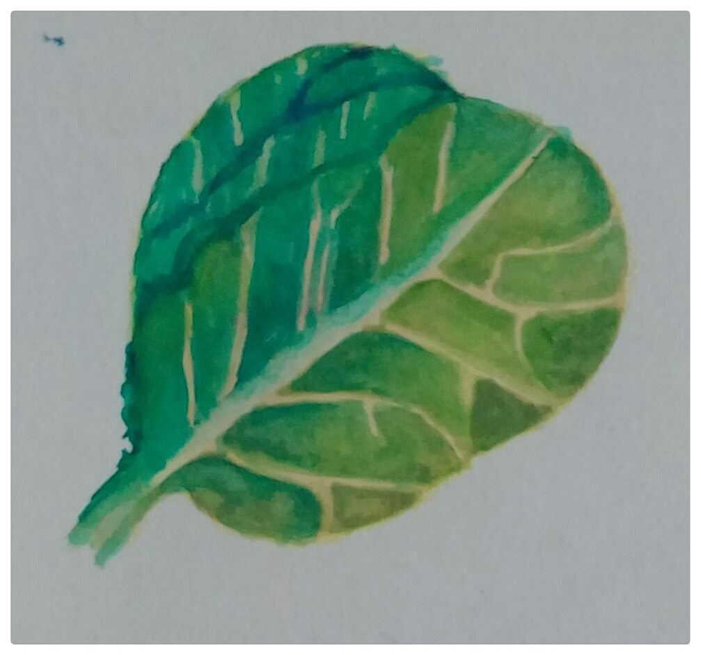 "Tried a watercolor tutorial ""How top paint leaves\"" by Leyla Torres from this website."