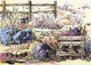 Plein air drawing done up on Powell Butte. Finished later at home. Zebra Zensations Technical Pen &a