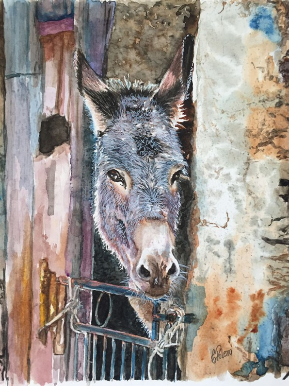 Watercolor Donkey Painting by Claudia Polena - Doodlewash
