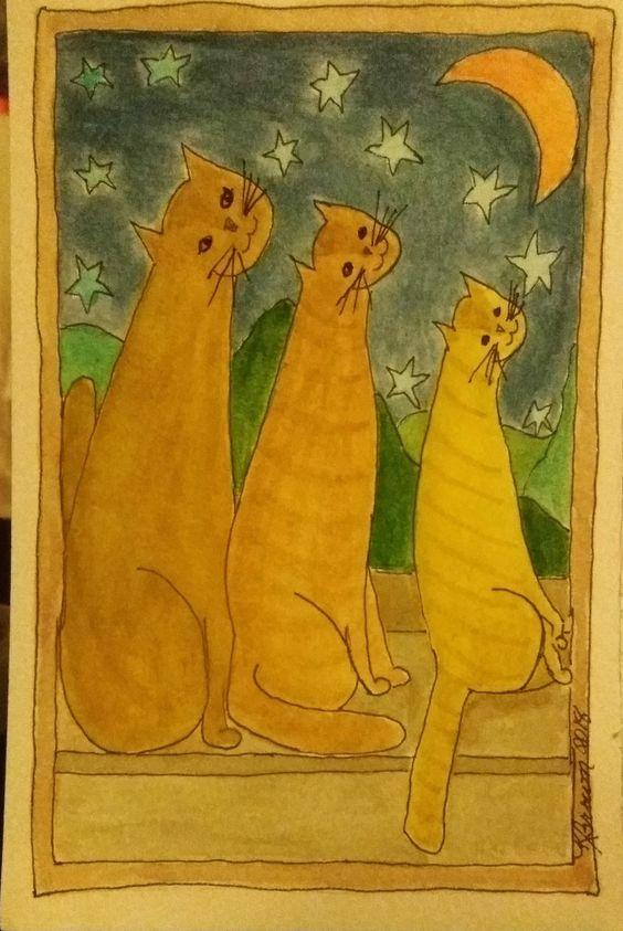 Three Ginger Catz at Night three ginge3r catz and stars