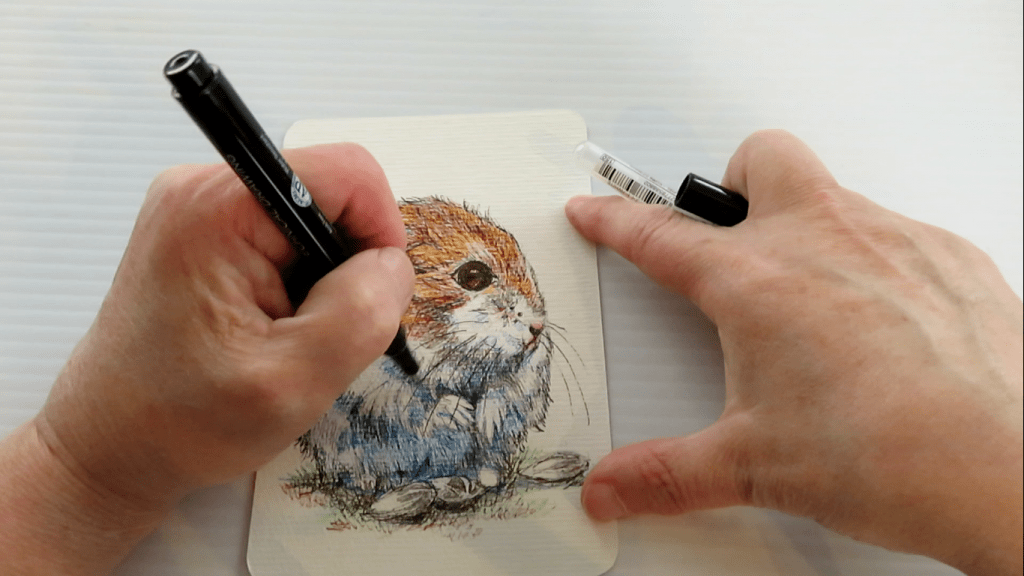 How to Draw A Hamster - Step 13 - Final Adding Whiskers - Doodlewash