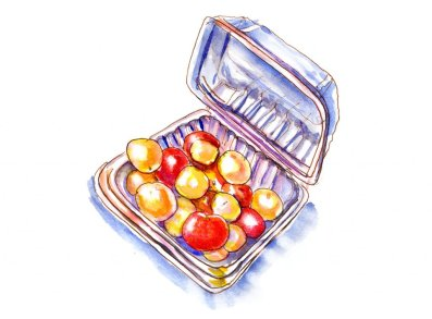 Day 15 - Grocery Store Cherry Tomatoes Clamshell_