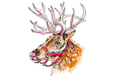 Christmas Reindeer Watercolor - Doodlewash