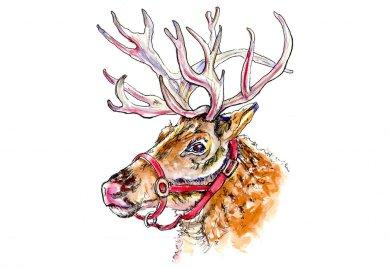 Christmas Reindeer Watercolor - Doodlewash