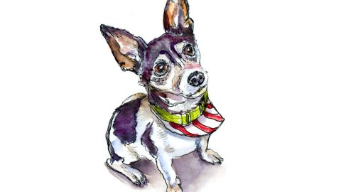 Day 20 - Christmas Dog Out Pet Portrait Watercolor - Doodlewash