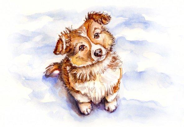 Day 26 - Puppy Dog In Snow - Sketchbook Detail - Doodlewash
