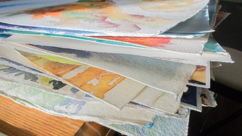 Angela Fehr Watercolor Paintings In Progress - Doodlewash