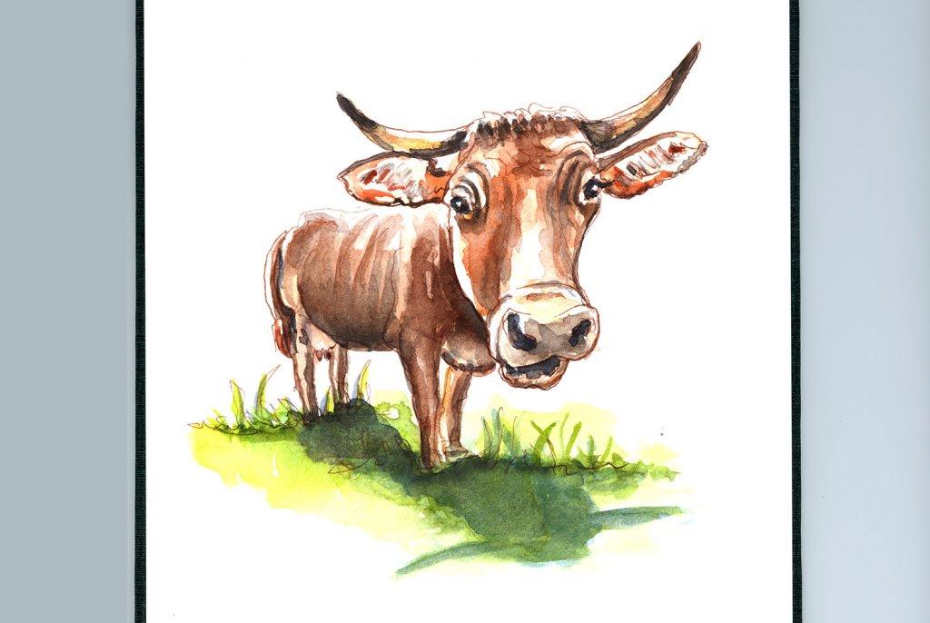 Day 26 - Bull Cow Farm Animals Watercolor - Sketchbook Detail - Doodlewash