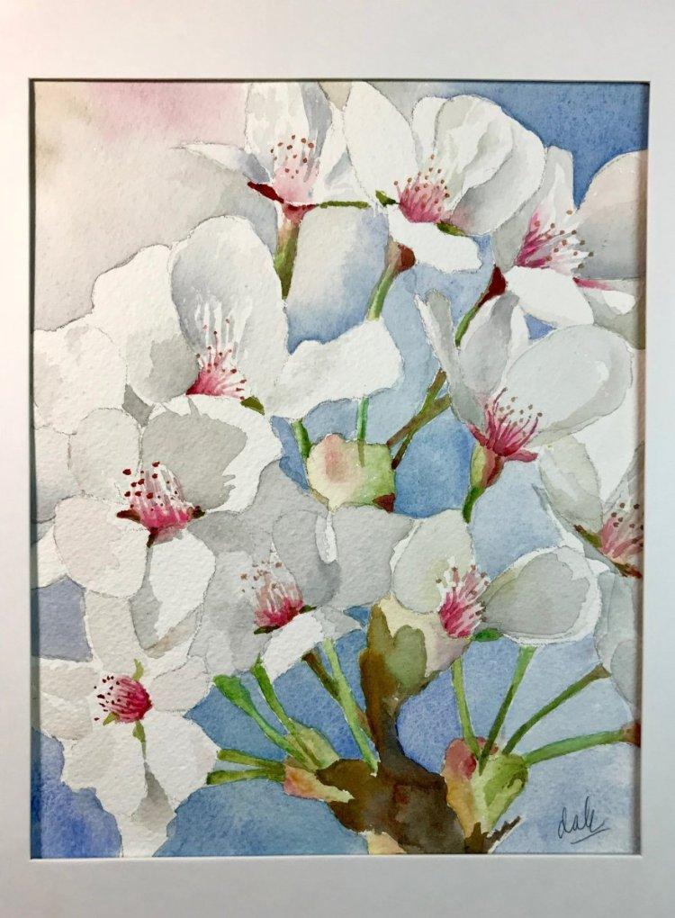 Apple blossoms FB77D21A-7988-48E9-965A-D3E5F351AFF1