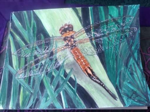 I love dragonflies, I am told they depict change. This one is my favourite watercolour, its wings we