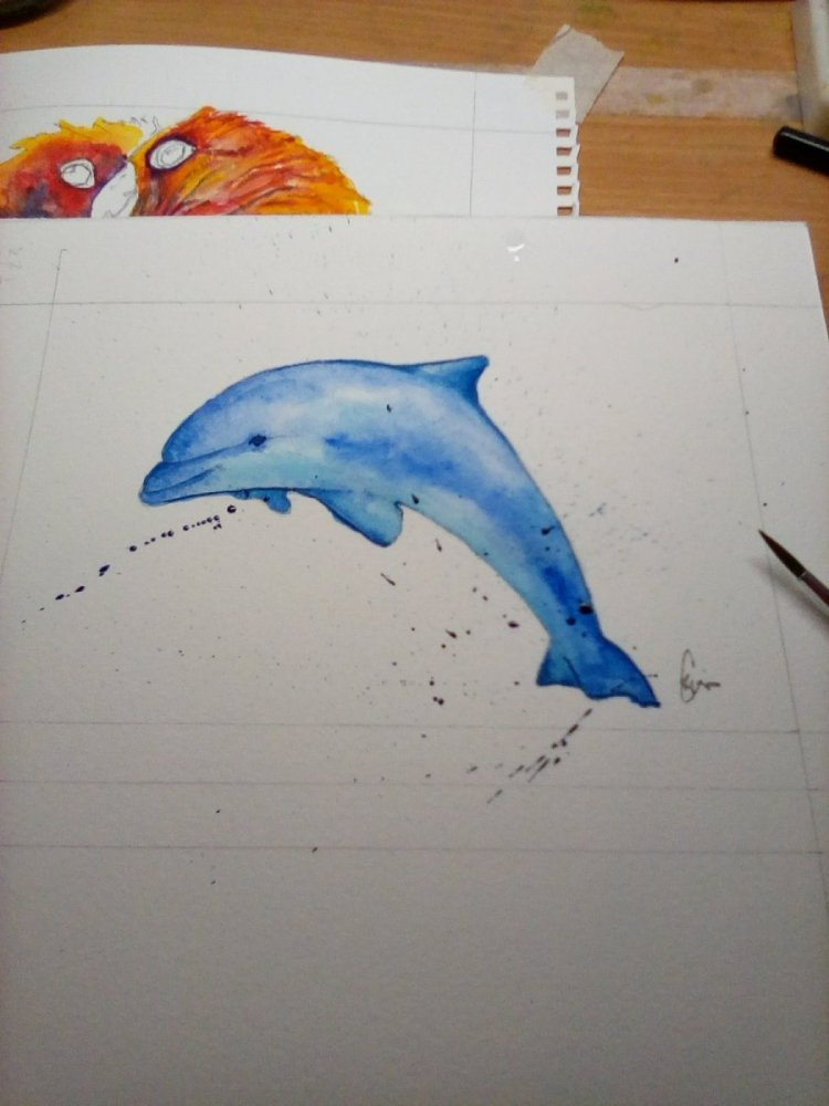 #day10 # doodlewash January Dolphin IMG_20190110_183057